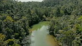 madagaskar : AERIAL: River in the middle of Rainforest in Madagascar