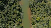 documentary : AERIAL: River in the middle of Rainforest in Madagascar