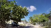 main street : Nassau, Bahamas FEB 6: Ghetto neighborhood in Nassau, Bahamas on Feb 6, 2017. Nassau is a very secure island. Stock Footage