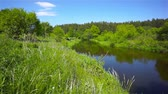 litwa : River landscape in Lithuania, sunny day
