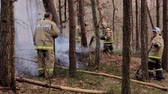 itfaiyeci : Svetlogorsk, Russia - April 17, 2018: Firefighters extinguish the fire in the forest Stok Video