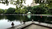 amérique centrale : New York, USA - September 6, 2018: People visit central park in Manhattan at day time at summer, ducks near the pond at foreground
