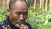 An elderly Asian man swallowing an alive snake