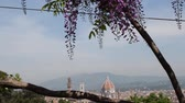 toscana : Cathedral of Saint Mary of the Flower in Florence as seen from Bardini Garden with blooming purple wisteria.