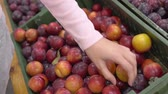 решать : Girl in the supermarket chooses fruit, close-up. Female hand picks fruits in the supermarket.