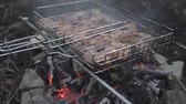 石炭 : Delicious meat in the grid barbecue is prepared on the coals. The concept of outdoor recreation. Food cooked on fire.