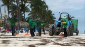wrack : PUNTA CANA, DOMINICAN REPUBLIC - NOVEMER 12, 2014: Workers cleaning resort beach from sea wrack and garbage. Tractor with container moving behind