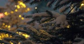 мерцать : Twinkling Christmas tree with following focus on close-up snowy pine branches. Evening shot Стоковые видеозаписи