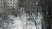 piccione : Winter scene of woman with baby carriage walking among apartments houses. Snowy playground with bare trees in foreground, pigeons searching for food. St. Petersburg, Russia Filmati Stock