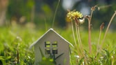 ekologia : Concept of eco home and living in the countryside. House model on green lawn and bee on dandelion