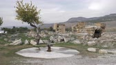 pamukkale : Scene with ruins and drinking fountain in ancient city Hierapolis in Pamukkale, Turkey