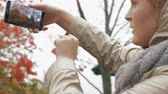 Woman making mobile photo of a rowan tree when walking with baby in the park on autumn day Stock Footage