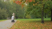 baby carriage : A woman is walking with a baby carriage in a beautiful autumn park. Colorful leaves are covering grass and woman stops for a moment to take a picture of them on her smartphone. After that she continues the walk, looking at the photo with a smile