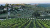 vegetal : Panoramic views of the hills and land wine in Tuscany