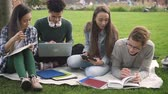 comunicare : Mixed race students collaborating doing university project. African american man holding laptop computer, asian and caucasian friends using notebook for study on grass.
