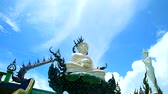 Лилли : Pearl buddha sit on lilly pad with white cloud background time lapse Стоковые видеозаписи