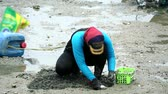 modder : woman dig to find shellfish shell and crab when low ebb tide Stockvideo