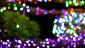 rainbow color blur light decoration in the night garden area