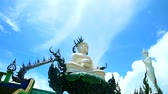 Лилли : Pearl buddha sit on lilly pad with white cloud background