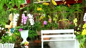 cruche : garden flower and orchid and bench and smoke of dry ice in the garden Vidéos Libres De Droits