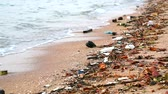 ervas daninhas : sunset on sea with plastic rubber and waste are left on beach and waves blew them into the sea