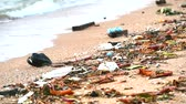 ervas daninhas : sunset on beach with plastic rubber and waste are left on beach and waves blew them into the sea