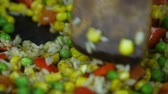fast food : Stirring after pepper. Stock Footage