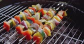 spring onion : Four vegetable kabobs on grill Stock Footage