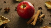 tempero : From above shot of ripe red shiny apple on canvas napkin with aromatic cinnamon sticks and anise stars Stock Footage