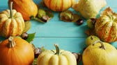 com casca : From above view of yellow pumpkins and shelled chestnuts laid in circle on blue wooden background