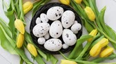 codorna : Beautiful yellow tulips with dotted quail and chicken eggs in nest on white wooden background. Spring and Easter holiday concept with copy space.