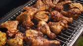 マリネード : Delicious chicken pieces frying on barbecue grill. Outdoor summer party ideas. 動画素材