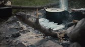 еда : Fish grilling on barbecue.Camp life.Traveling. Стоковые видеозаписи