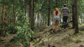 晴れた : Young man reaches for young womans hand, they hold hands and stand still in beautiful forest (Slow Motion)