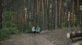 晴れた : A young attractive couple walking through the forest with their happy dog.The girl and the guy call their dog.Couple in love play with the dog shiba in pine forest .Sunny weather.