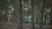 晴れた : A young attractive couple walking through the forest with their happy dog.Couple in love play with the dog shiba in pine forest .Sunny weather.Slow motion.