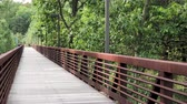 Angled view of wood footbridge in outdoors with branches blowing from wind