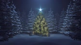 noel kartı : Christmas tree with a shining star and a garland in the forest with falling snow Stok Video