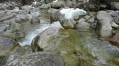 kamie�� : fast mountain stream among the stones spring a thaw in the forest Wideo