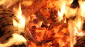 chamas : fire flames and hot coals