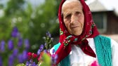 starość : Ukrainian elderly woman in red headscarf stands near wooden hut and looks at the camera. Old woman stands in flowers near his house and looks at the camera. Female looks at the camera and smiles