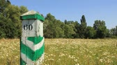 flora : Green boundary post and beautiful nature Stock Footage