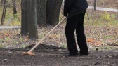 toiler : Manual labour. Cleaning in city park. People are busy handiwork Stock Footage