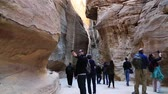 cart n corrugado : JORDAN, PETRA, DECEMBER 5, 2016: People in the Siq - a narrow passage, gorge that leads to the Red Rose City of Petra, originally known to Nabataeans as Raqmu - historical and archaeological city in Jordan