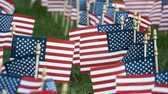 герои : American flags in the US Independence Day Стоковые видеозаписи