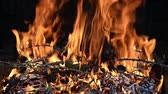 Seamless loop, close up of a fire with flames, small wood branches and pine cones - HD Video
