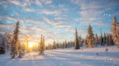 Seamless loop - Snow falling on a winter landscape at sunset, Saariselka, Lapland, Finland, HD video