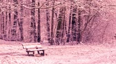 Seamless loop - Snowing on a bench in a forest, winter scene, HD video