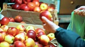 mand : Close up women hands recruit red apples in plastic bag in shop
