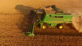 arazi sahibi : Green combine harvester in motion. Wheat field.